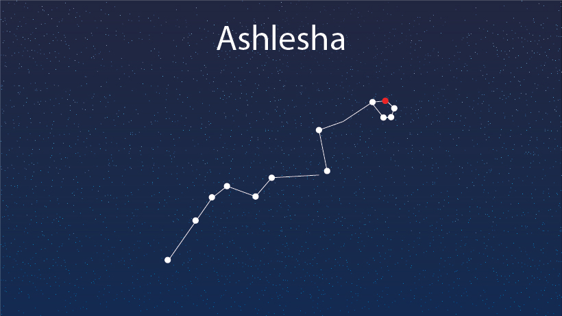 A star constellation of ashlesha.
